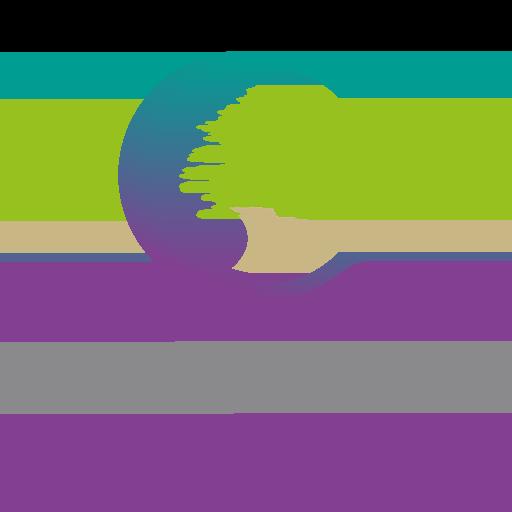 Cedars School